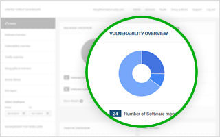 Vulnerability Overview