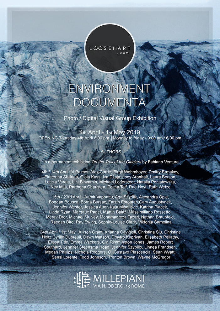 Environment Documenta poster 42 x 29,7 cm │16,53 x 11,69 inch
