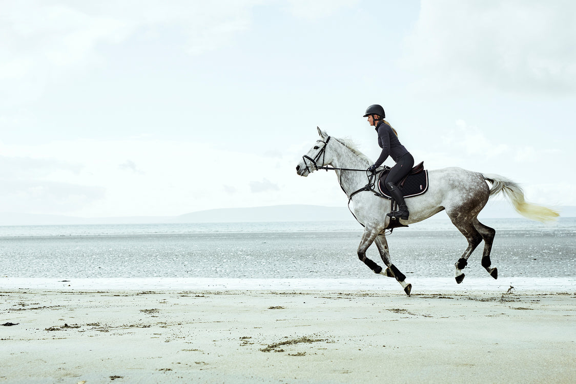 Your world wide equestrian store - leading brands part one