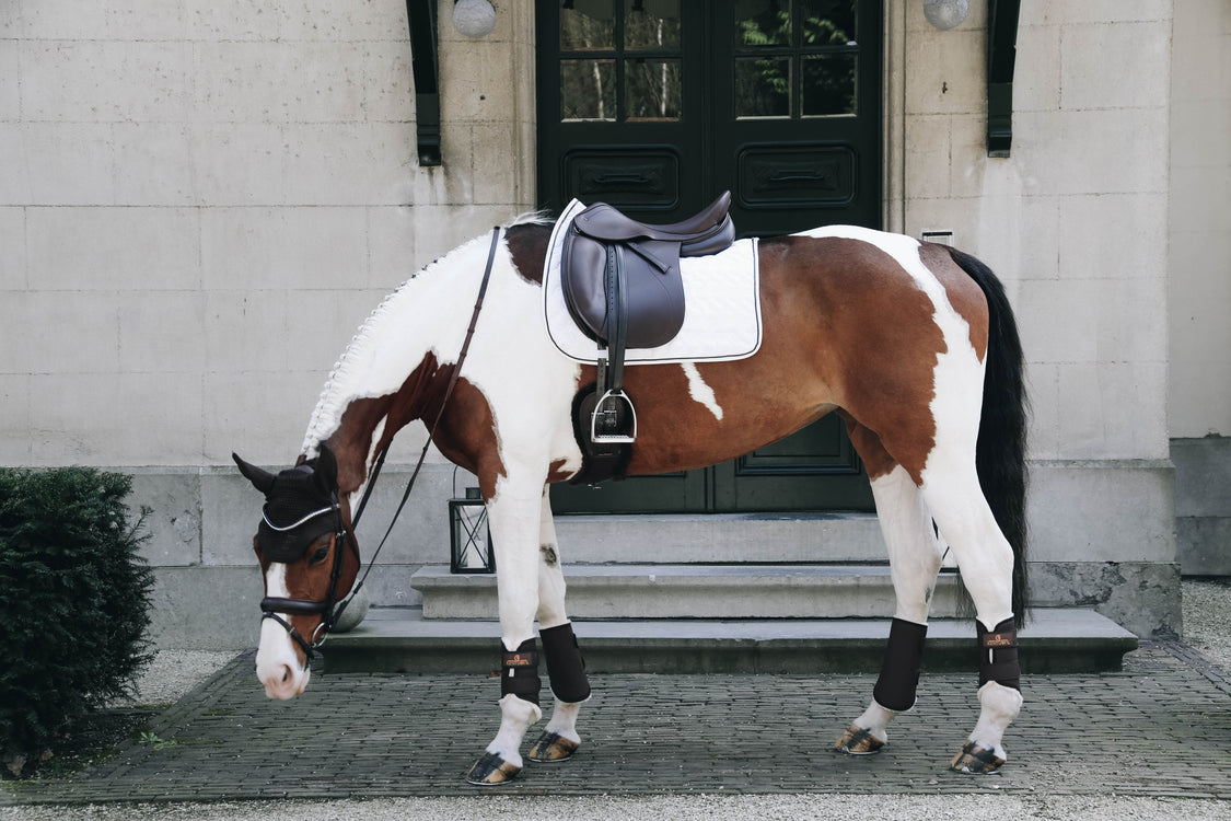 How to get the perfect dressage competition look