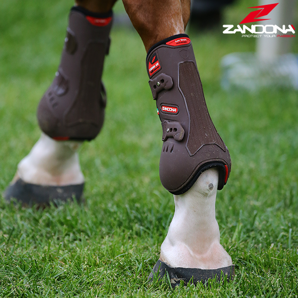 Zandona Equestrian products