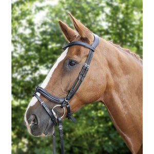 Anatomic Bridle
