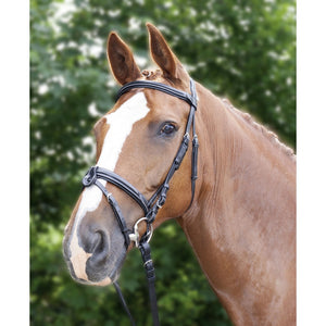 Anatomic shaped bridle with gel