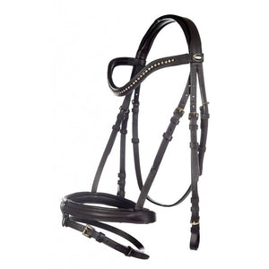 Brown bridle with brass fittings