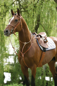 Breastplate with Running Martingale