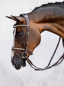 Bridle with clincher noseband
