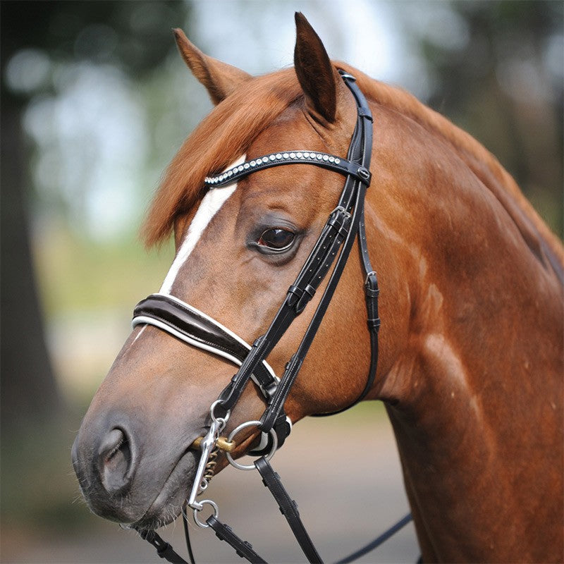 Double Bridle with patent noseband