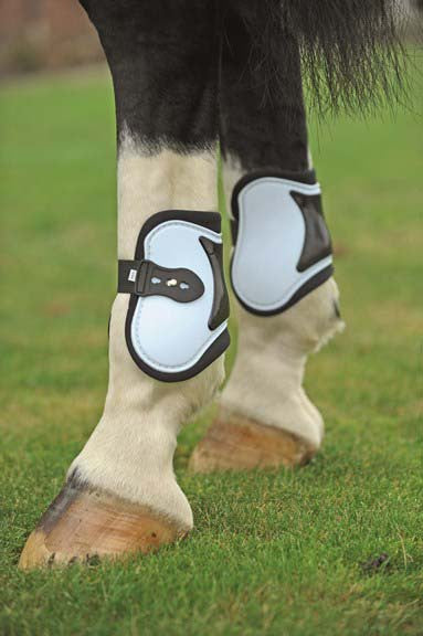Set of 4 Tendon & Fetlock Boots