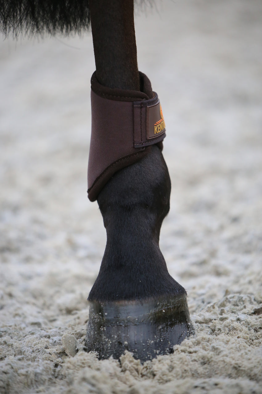 Light Fetlock boots