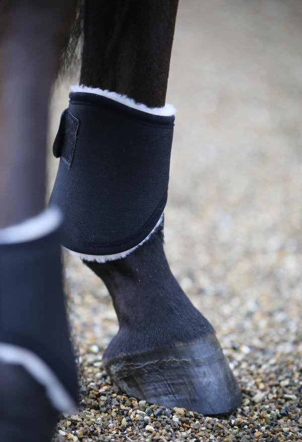 Hind Turnout Boots