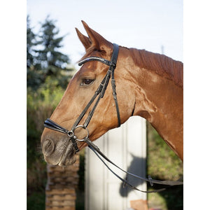 Anatomic Black Drop noseband bridle