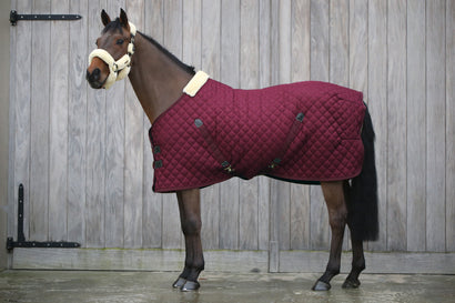 Kentucky Bordeaux Stable Rug