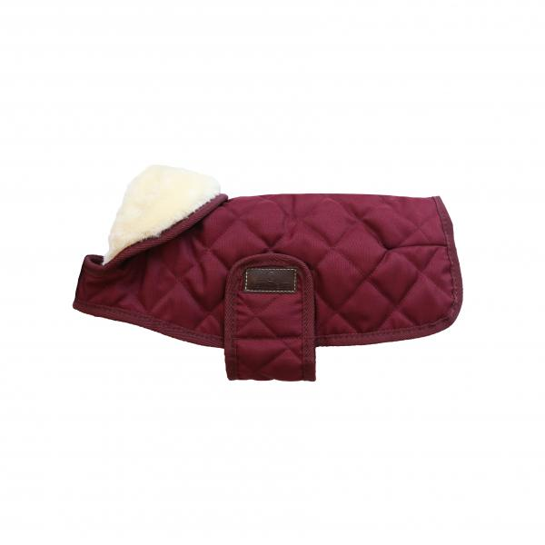 Kentucky Bordeaux Dog Coat