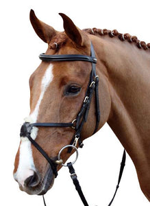 Mexican Style Bridle with Padded Grackle Noseband