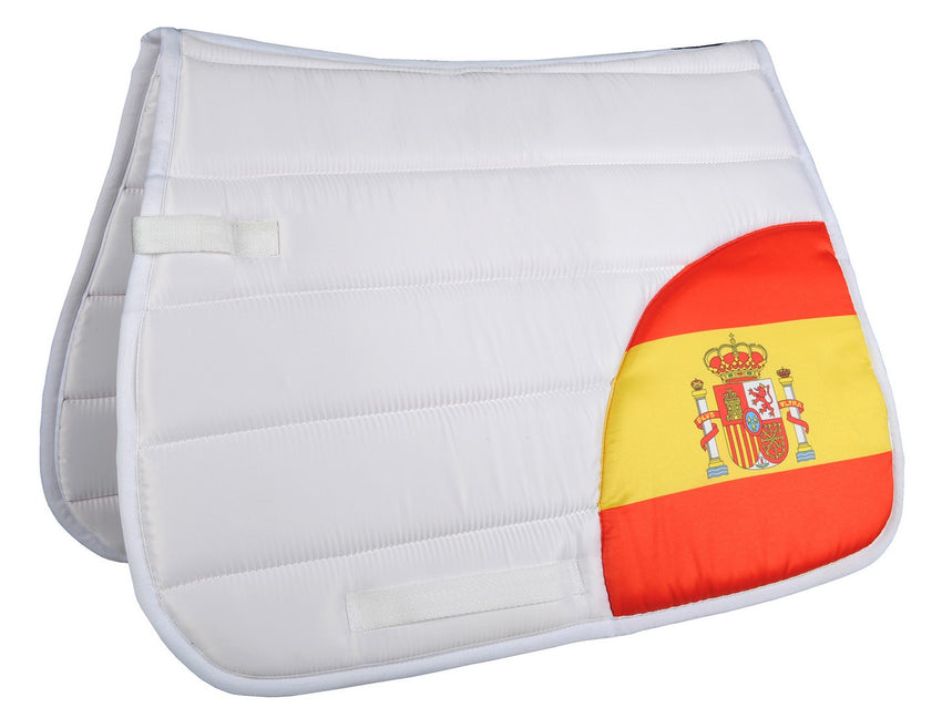 Saddle Blanket Flags Corner