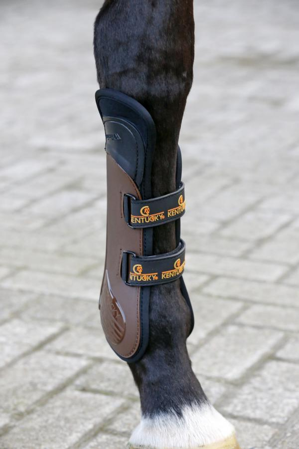 Tendon Boots with Knee protection