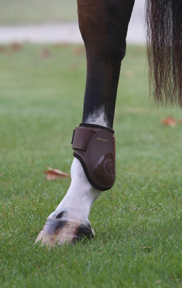 FEI Approved Young horse hind boots