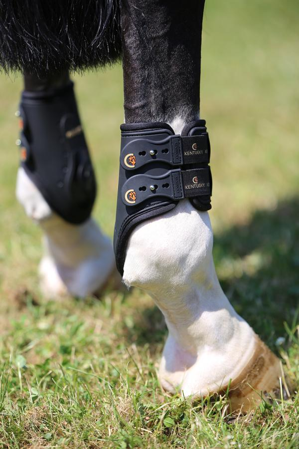 Hind Showjumping Boots