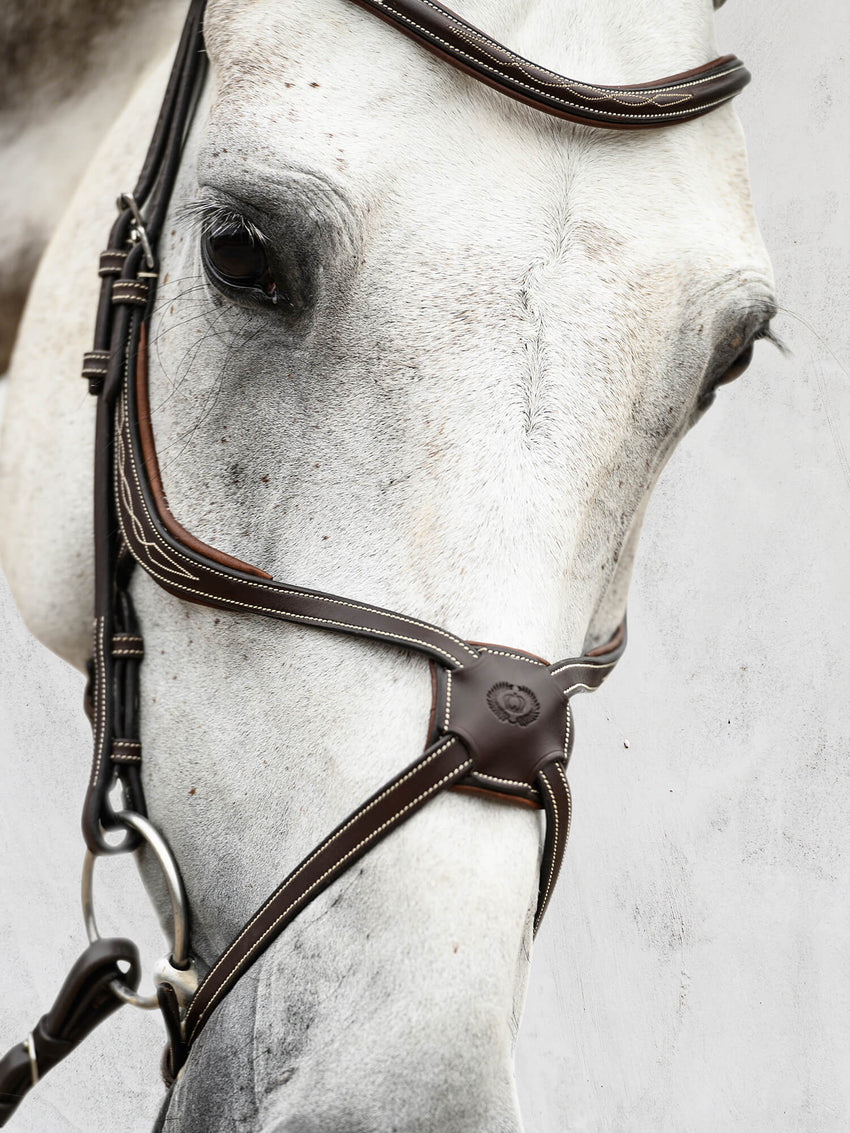 PS of Sweden figure 8 brown bridle