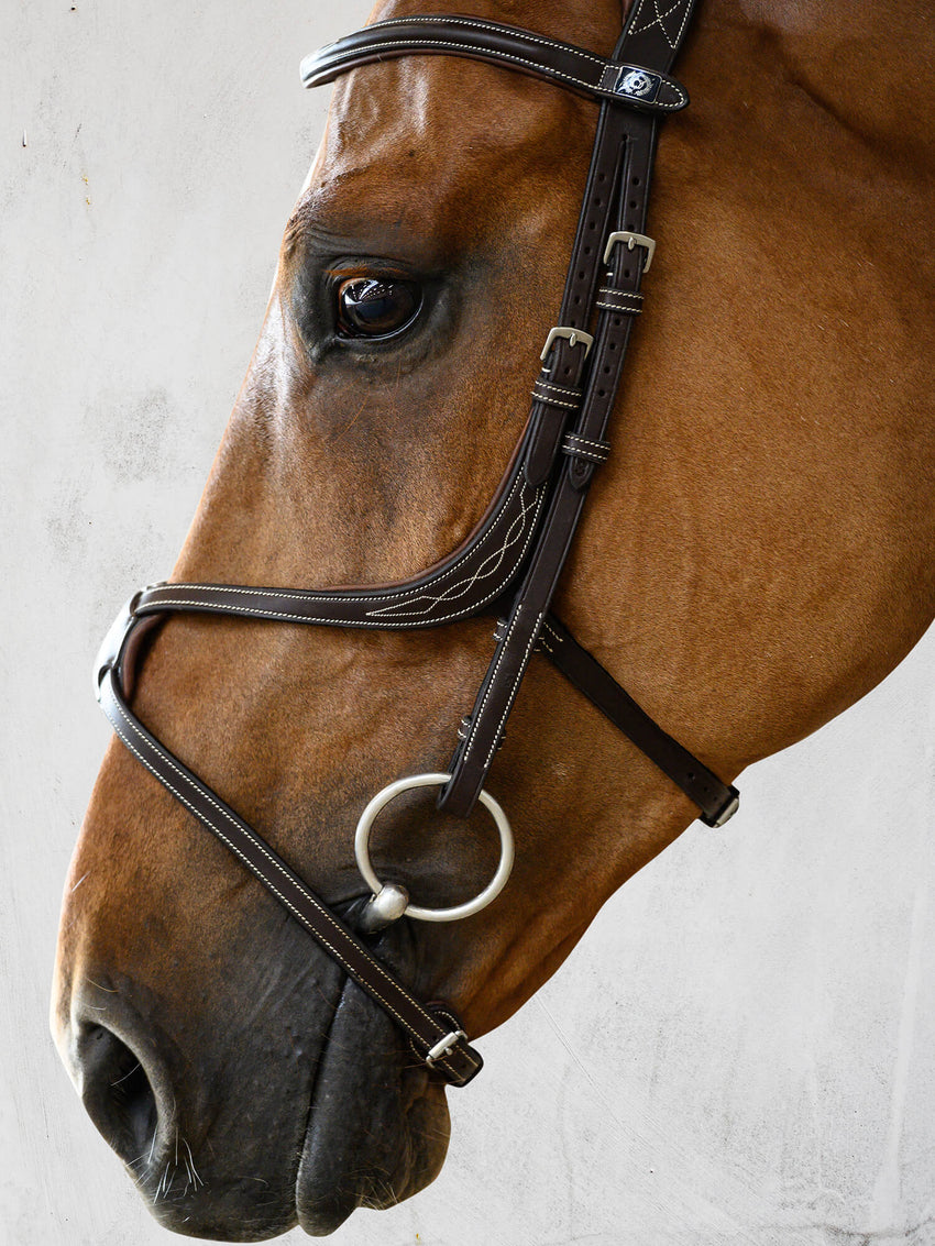 New PS of Sweden bridle