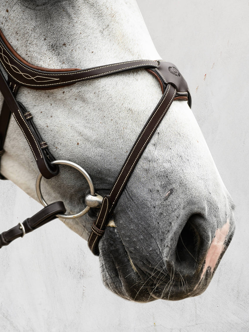 PS of Sweden Figure 8 Bridle