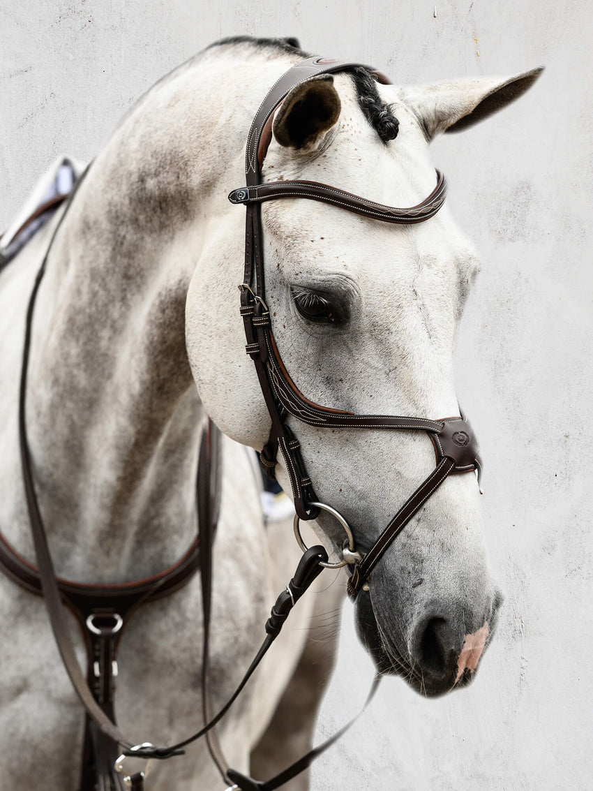 PS of Sweden Mexican Noseband Bridle