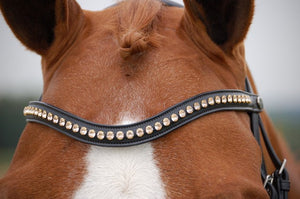 Swarovski Rose Gold Browband
