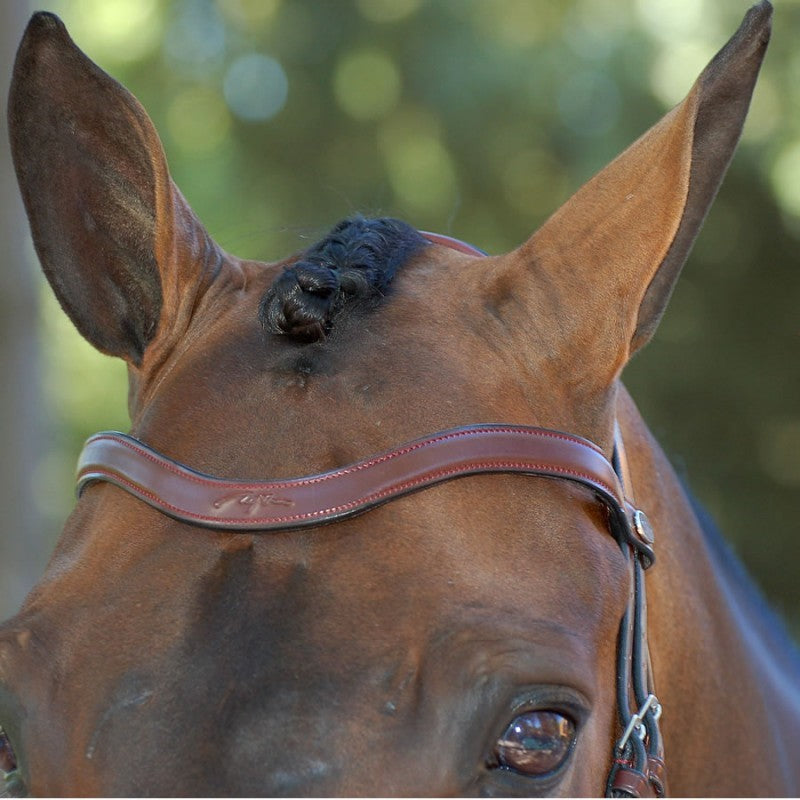 V Shaped Browband
