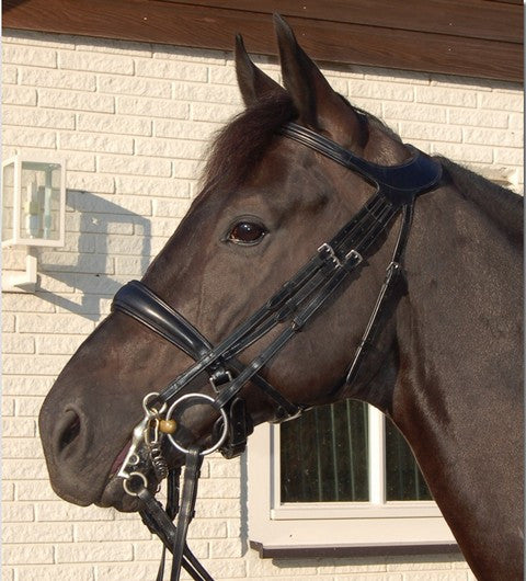 Dy'on Difference Double Bridle