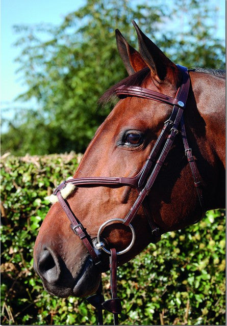 Fig 8 Noseband Bridle