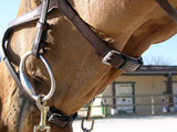 X-Fit Anatomic Bridle