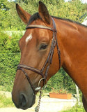 Dy'on Snake Style Bridle