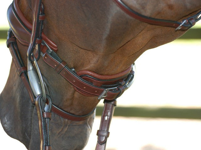Swedish Noseband Dressage bridle