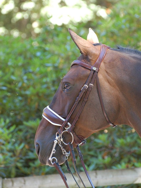 Dressage Double Bridle