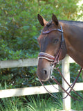 Brown Double Bridle with White Padding