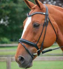 Rolled Dressage Bridle