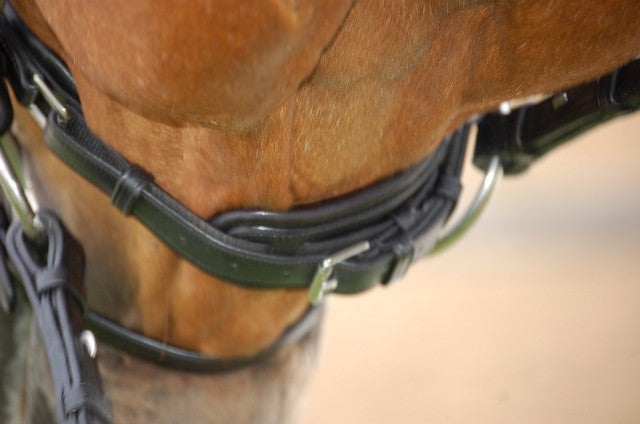 Rolled Leather Dressage Bridle