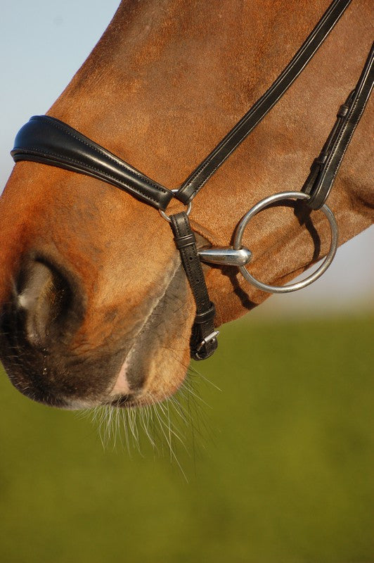 Leather Drop Noseband Bridle