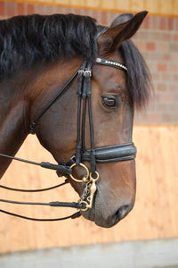 Rolled English Leather Double Bridle