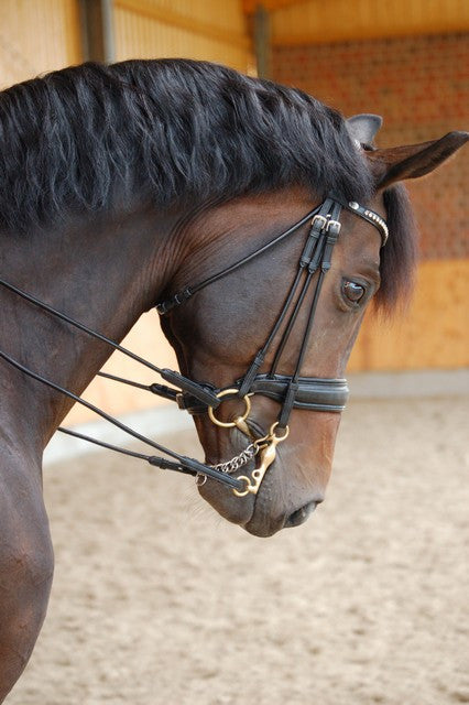 Rolled Leather Double Bridle
