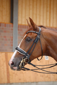 Large Crank Noseband Double Bridle