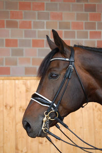Dy'on Double Bridle