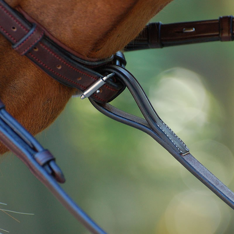 Standing Martingale Attachement