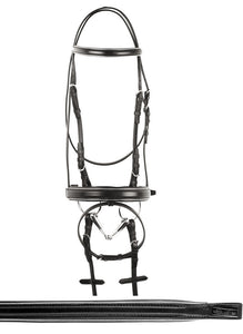 Silver Bridle