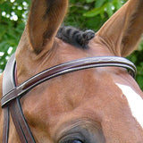 Brown Hunter Bridle