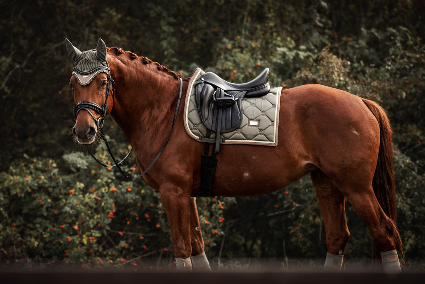 Saddle pad by Fjord equestrian olive green dressage cut