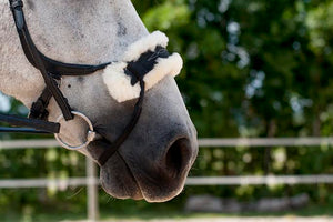 Sheepskin Noseplate for High Jump Bridle
