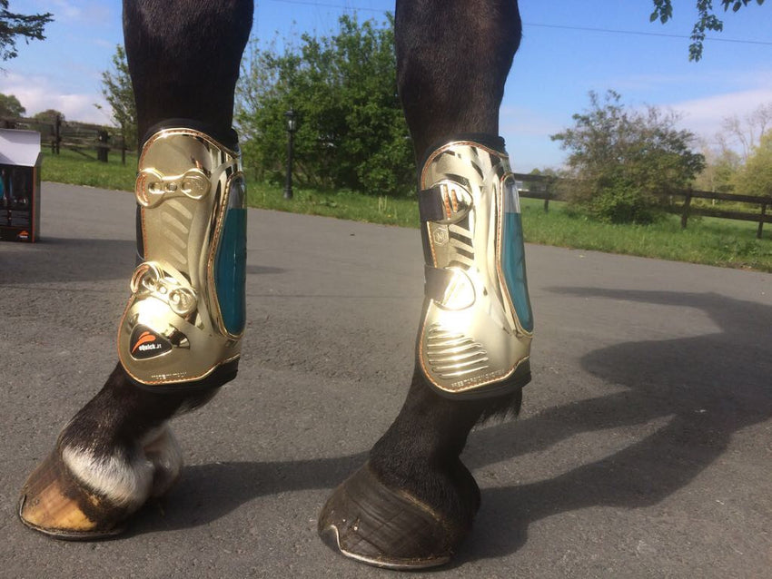 Gold Tendon Boots