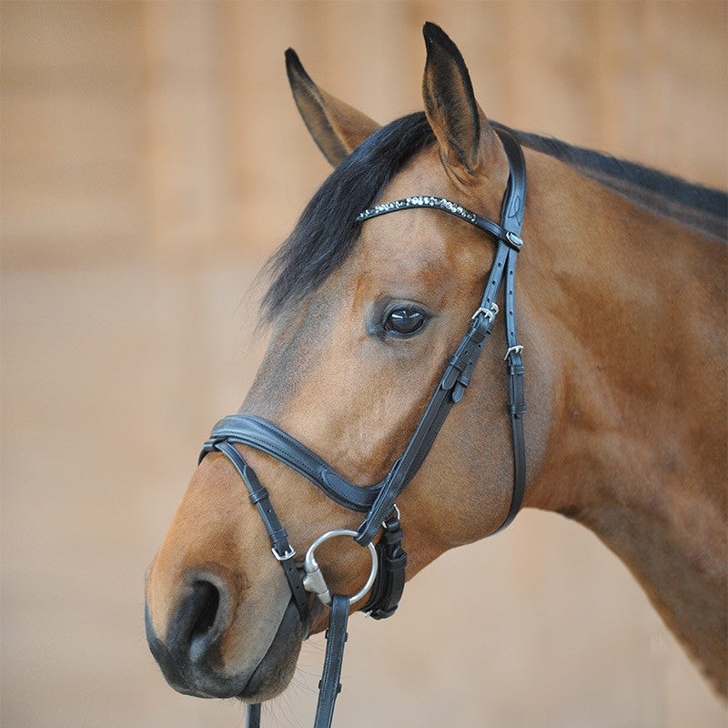 Anatomic Noseband Bridle