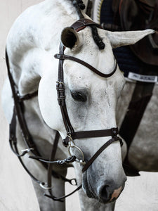 Training bridle with bit clips
